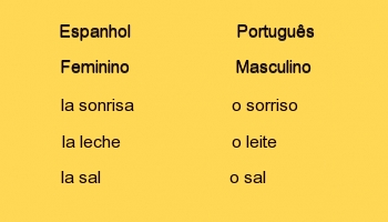 Gramatica masculino feminino